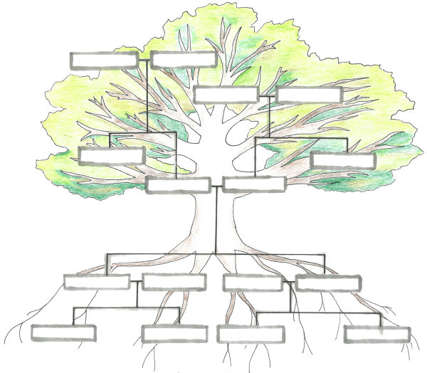 Illustration of a Family Tree, by Imogen