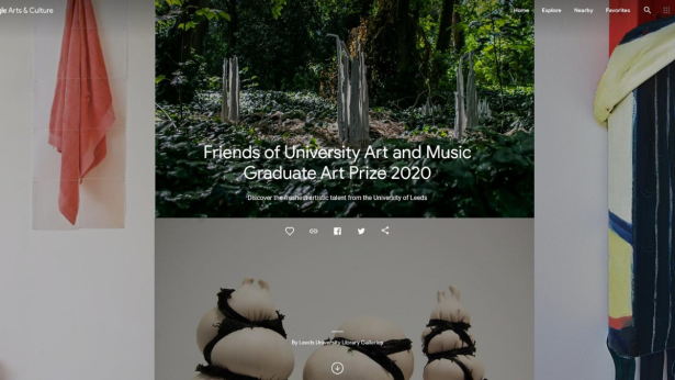 A screenshot of the Friends of University Art and Music Graduate Art Prize 2020 on the Google Arts & Culture website.